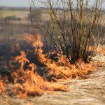 Mange naturbrande samt bil- og containerbrande