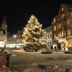 Har du kommunens flotteste juletræ i haven?