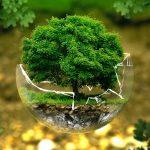 Tænk på dig selv og miljøet – det gælder fødevarer og pleje