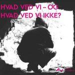 Ny rapport om unge i bander i dansk sammenhæng