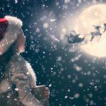 Husk kommunens juletræstænding i weekenden