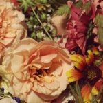 Bloomit – Odenses mest succesfulde blomsterhandler