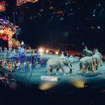 Elefantpension på finansloven for 2019