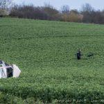 Bilist havner på en mark og får en del kvæstelser