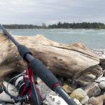 Hornfisk-fiskeri for hele familien