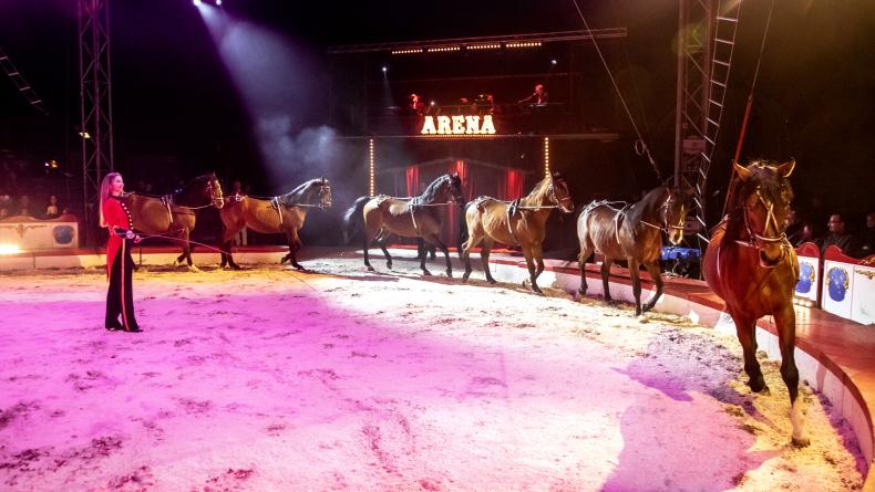 Foto: Cirkus Arena